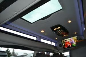 9 Passenger Luxury Van